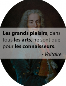 Plural in French with Voltaire
